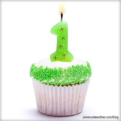 Celebrating our 1-Year Anniversary and THANK YOU for reading!
